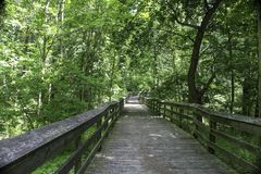 Shaded boardwalk in the woodlands. Summer sunlight and shade on wooden boardwalk. Canawaugus park in Scottsville, NY stock images