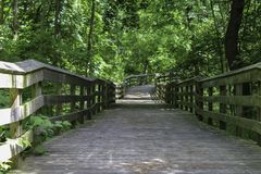 Shaded boardwalk in the woodlands. Summer sunlight and shade on wooden boardwalk. Canawaugus park in Scottsville, NY stock photos
