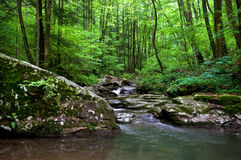 Shaded Creek. Photograph of a small creek and rapids deep in the shaded forest of the Appalachians Stock Photos