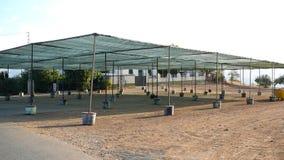 Shaded Feria Ground Stock Image