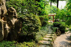 Shaded flagstone path in sunny summer Royalty Free Stock Image