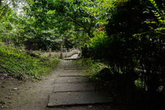 Shaded flagstone path to bridge in verdant summer green Royalty Free Stock Image