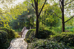 Shaded footpath to bridge on sunny day Stock Image