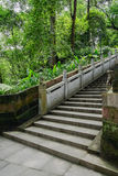 Shaded hillside stone stairway with embossed balustrade in woods Royalty Free Stock Photography