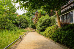 Shaded path along brook between Chinese traditional houses in su Stock Photos