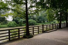 Shaded riverside footpath in sunny summer Stock Photo