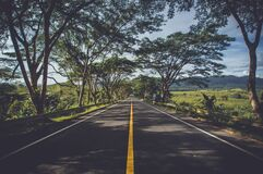 Shaded road Royalty Free Stock Photography