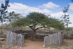Shaded seating Acacia tree. Shaded seating and table under acacia tree in Masai Mara Kenya Royalty Free Stock Photo