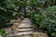 Shaded stone steps and footpath Stock Images