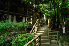 Shaded wooden stairway and planked footbridge between Chinese tr Stock Image