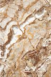 Shades of brown marble slab texture background. Abstract, beautiful background, white and brown swirls Stock Photos