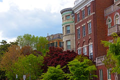 Shades of green color and townhouses in Washington DC during spring. Royalty Free Stock Image