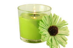 Shades of green. Isolates. A burning candle with a decorative green flower. Green `Gerbera`. The candle is green. Candle in a glass candlestick. Two subjects royalty free stock images
