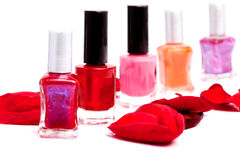 Shades of red polish Royalty Free Stock Images