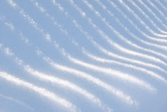 Shades on snow Royalty Free Stock Photo