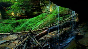 Shades State Park Maidenhair Falls stock footage