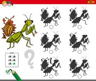 Shadow activity game with bug characters. Cartoon Illustration of Finding the Shadow without Differences Educational Activity for Children with Bugs Animal Stock Images