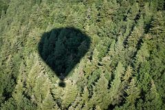 Shadow of air hot balloon. On the forest stock photography