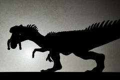 Shadow of allosaurus biting a body  on wall Stock Photos