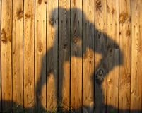 Shadow of amicable boy and girl which embrace. On wooden surface royalty free stock image