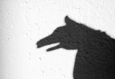 Shadow of animal. On the wall Stock Photography