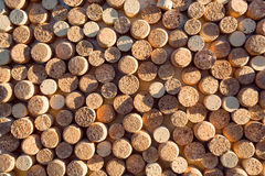 Shadow on the backgrounds of of wine corks. Stock Photography