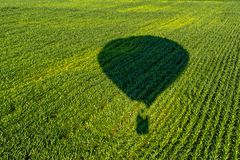 The shadow of a balloon flying over the fields of young corn stock photo