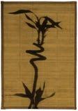 Shadow of bamboo royalty free stock photo