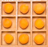 Shadow box with apricots Royalty Free Stock Photo