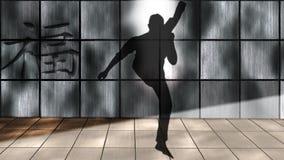 Shadow Boxing, Kick, Kick Boxing Royalty Free Stock Images