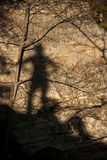 Shadow of a Boy Royalty Free Stock Image