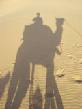 Shadow and camel Stock Image