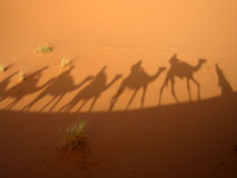 Shadow of caravan. Shadow of a caravan in the Sahara desert (Three Wise Men Stock Photo