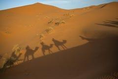 Shadow caravan in the Sahara stock photos