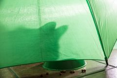 Shadow of a cat on a green background. Shadow of a cat under a green umbrella eating  croquettes abstract adorable animal animals art background bars beef stock photography