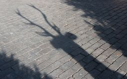 Shadow of the Christmas reindeer with large branching antlers on the paving stone. Shadow of the Christmas reindeer with large branching antlers with trees on stock photography