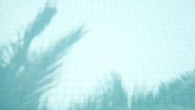 Shadow of coconut palm tree leaves reflect on water surface in swimming pool. abstract 4K footage for tropical vacation on summer. Holiday background stock video footage