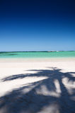 Shadow of coconut palm tree on tropical beach Royalty Free Stock Photography