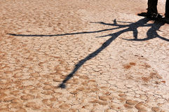 Shadow on cracked mud Stock Image