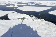 Shadow of cruise ship, Antarctica Royalty Free Stock Images