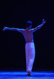 Shadow-Cry-Modern dance Royalty Free Stock Photography