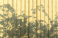Shadow on the curtain Royalty Free Stock Photos