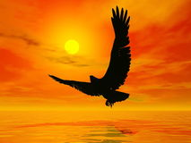 Eagle by sunset - 3D render. Shadow of an eagle flying to the sun by red sunset over the ocean Royalty Free Stock Photography