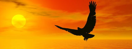 Eagle by sunset - 3D render. Shadow of an eagle flying to the sun by red sunset over the ocean Royalty Free Stock Images