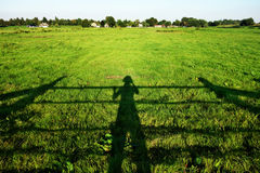 Shadow of farmer inspecting crop Royalty Free Stock Images