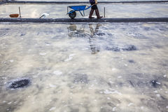 Shadow of farmers on salt field Stock Photos