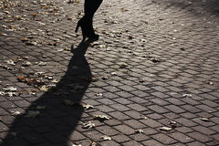 Shadow on the gray paving Royalty Free Stock Image