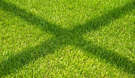 The shadow on the green grass. Stock Photo