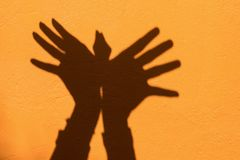 Shadow of hand symbol mean animal like a Bird on Orange wall background.  royalty free stock images