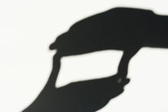 Shadow from the hands, photographic frame sign Stock Photo